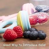 Haakaa Fresh Food Feeder Pacifier (2 Pack) Includes