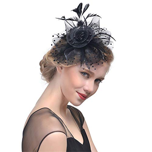 DARLING HER Women Hair Accessoires Feather Hat Headear Net Mesh Birdcage Veil Feather Hairpin French Hat Clips Party black