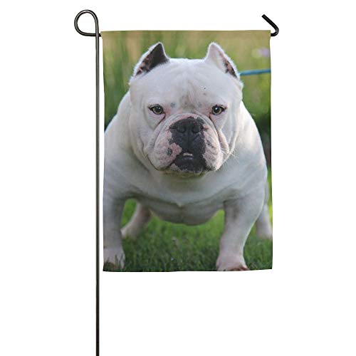 Puppy Bulldog Garden Flag Indoor & Outdoor Decorative Flags for Parade Sports Game Family Party Wall Banner 12x18 inches ()