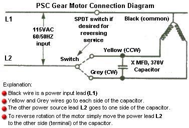 dayton 2z813 gearmotor, ac, 4 rpm 2z813 permanent magnet motors dayton motors  wiring diagram