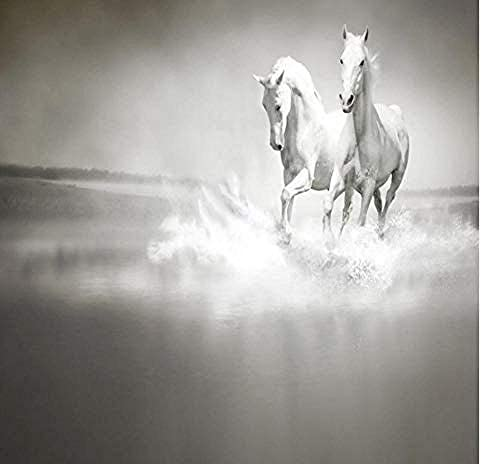 Djskhf カスタム写真の壁紙ペンティアム白馬カップルセルフプリント家の装飾アート寝室3D Hd壁紙シーンと接着剤リビング 120X60Cm