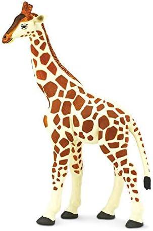 Amazon.com: Safari Ltd Wild Safari Wildlife Jirafa: Toys & Games
