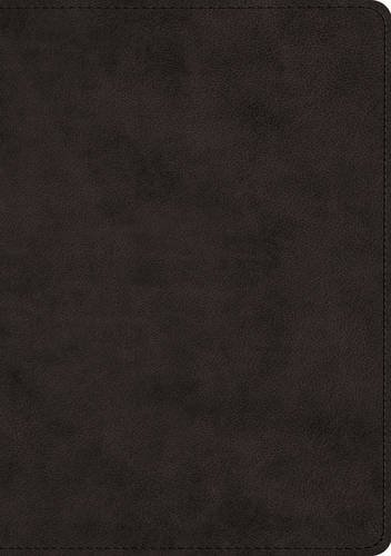 (ESV Journaling Bible, Interleaved Edition (TruTone, Black))