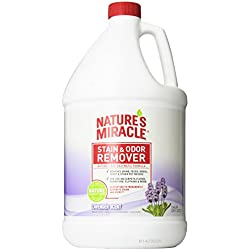 Nature's Miracle Stain and Odor Remover Lavender Scent, 1-Gallon (308011)