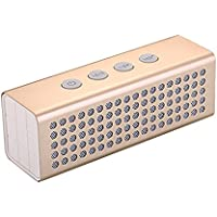 PYRUS Portable Bluetooth Speakers 2 x 10W Output 3D Surround Speakers Bulit-in 4400mAh Power Bank and Microphone for Handsfree Calling Wireless Speaker-Golden