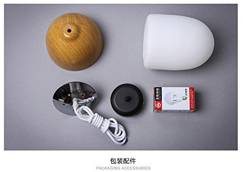 Injuicy Lighting DIY Decoration Lighting Vintage Ceiling Lamp Multi Types Imitation Wood Glass Pendant Lamp (D)