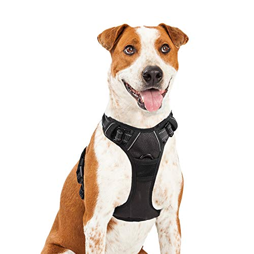 Rabbitgoo Adjustable Dog Harness No Pull Reflective Vest with Handle High Visibility Reinforced Straps Easy Control Harness (Large, Black) (Harness For Boxers)