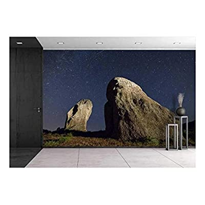 Majestic Creative Design, Real Night Sky Landscape with a Perseid Meteor and Two Menhirs, Premium Creation