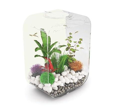 biOrb edición limitada, acuario de 15 litros: Amazon.es: Productos para mascotas