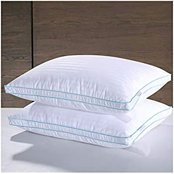 Amazon Com Homelike Moment Goose Feather Down Pillows For
