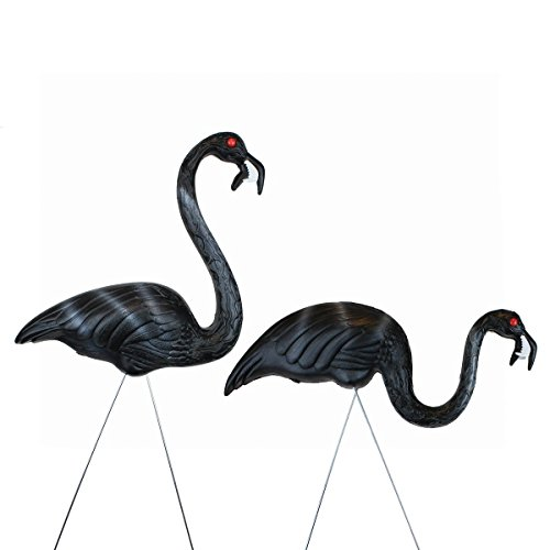[United Solutions 62363 Zombie Flamingos, Pair in Display] (Halloween Yard)