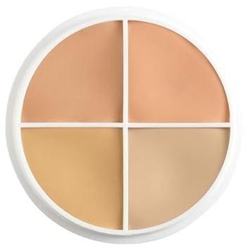 Amazon Ben Nye Concealer Color Wheels Cover All Wheel Sk 1
