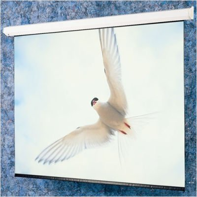 Draper 116278L Matte White: Targa Electric Screen With Low Voltage Controller - HDTV 65