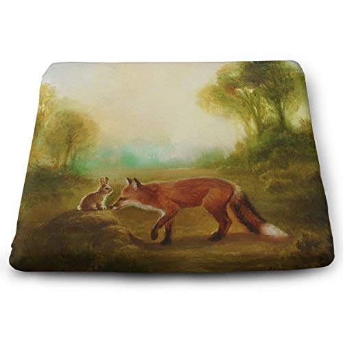 Seat Cushion Isabella and The Fox Chair Cushion Amazing Offices Butt Chair Pads for -