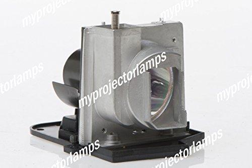 交換用プロジェクタ ランプ オプトマ SP.88R01GC01   B00PB50W2U