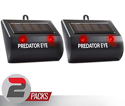Aspectek Solar Powered Predator Eye Pro Night Wild Animal Repeller 2 Pack (Black 00B) ()