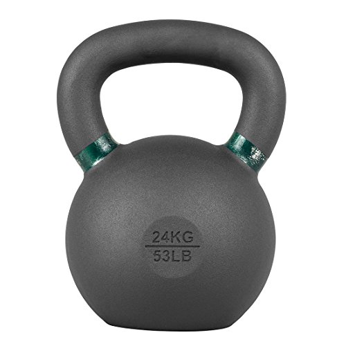 Lifeline Premium Kettlebell Weight Fitness Training Equipment (A number of Weights Out there) – DiZiSports Store