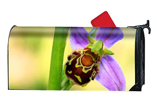 FunnyLife Bee Orchid Facts Mailbox Makeover Decorative Printed Magnetic Cover for Large Mailboxes by FunnyLife