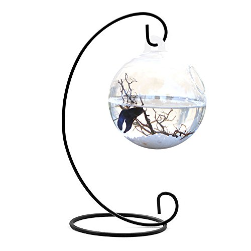 Kangkang@ Clear Round Shape Hanging Glass Aquarium Fish Bowl Fish Tank Flower Plant Vase Home Decoration with 28cm Height Black Rack