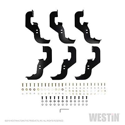 Westin 21-24135 Black Nerf Bar: Automotive