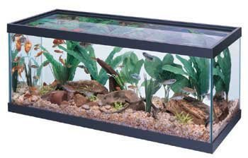 Aqueon Tank Black 30X12X12 20L by OCEANIC SYSTEMS INC.