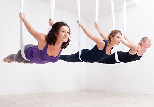 Dasking Premium Aerial Yoga Hammock Kit (White)