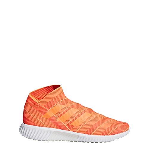 adidas Nemeziz Tango 18.1 Trainer Men's Soccer Shoe (9)