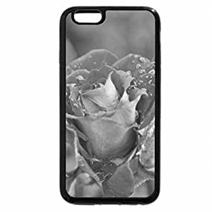 iPhone 6S Plus Case, iPhone 6 Plus Case (Black & White) - Pink Roses