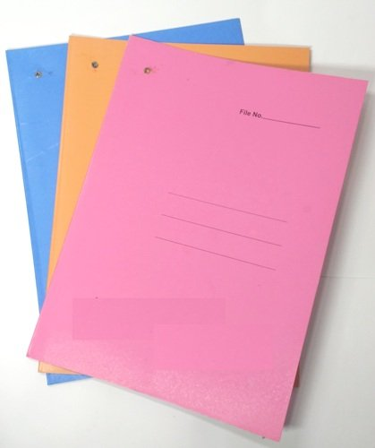 QualityCircle Assorted Colours Tag File Pack Of 24 Files: Amazon.in