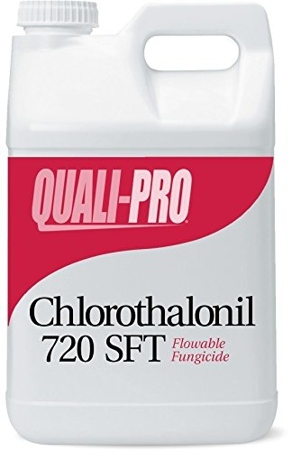 (Chlorothalonil 720 SFT Generic Daconil weatherstik)