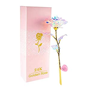 PIKAqiu33 24K Colorful Rose Artificial Flower, Gold-Plated Plastic Flower,Unique Gifts Valentine's Day Thanksgiving Mother's Day Girl's Birthday, Unique Gifts with Gold-Plated Plastic Flower Gift (A) 40
