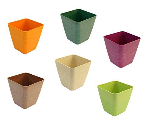 Compare Price To Mini Flower Pot Bulk