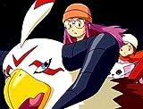 Digimon Adventure - Staffel 2, Volume 3: Episode 35-50