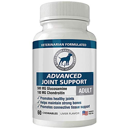 All New! Advanced Joint Support (Adult Formula) - Premium, VETERINARIAN-GRADE Dog Glucosamine, Chondroitin & MSM - Joint Supplement for Dogs - Tasty Chewables To Prevent Joint & Hip Issues