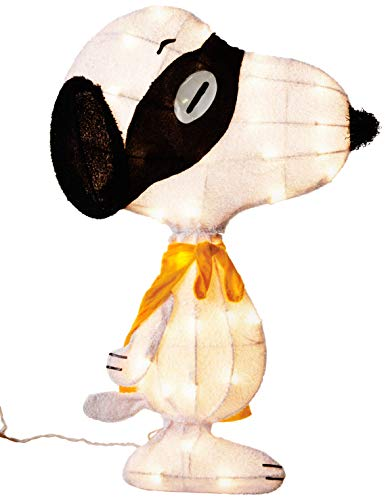 ProductWorks Product Works 70316_L2D 24-Inch Pre-Lit Spooky Masked Snoopy Yard Decoration
