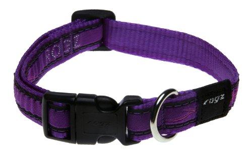 Rogz Fancy Dress Medium 5/8-Inch Scooter Dog Collar, Purple Chrome Design, My Pet Supplies