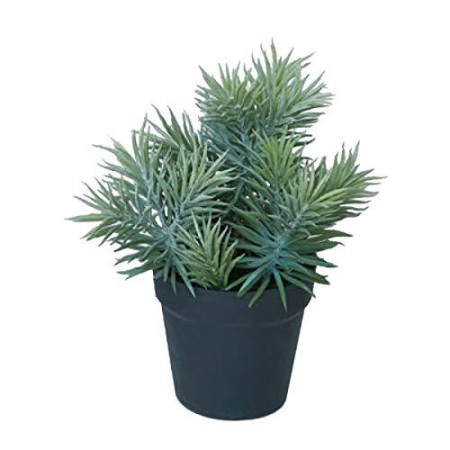 人工観葉植物 セネシオポット(4個セット) ba170 多肉植物 (代引き不可) インテリアグリーン 造花 POT SUCCULENT B07SXGMHJ1