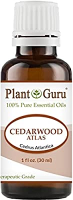 Cedarwood Atlas Essential Oil 100% Pure Undiluted Therapeutic Grade. from Plant Guru