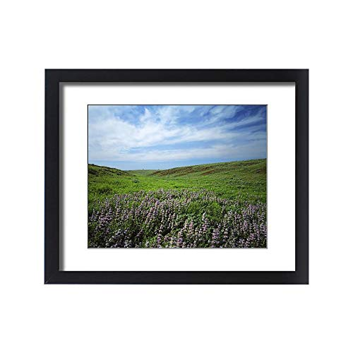 (Media Storehouse Framed 20x16 Print of USA, Kansas, Big Basin Prairie Preserve)