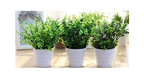 - XICHEN 3 Suit Artificial Potted Simulation Plant Potted Indoor Green Plant Small Bonsai Pastoral Living Room Office Display Simulation Flower (White)