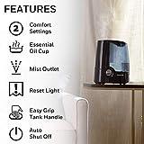 Honeywell HWM705B Filter Free Warm Moisture