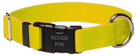 Nylon Side Release Dog Collar - Select from 14 Collars and 6 Different Sizes Plus Size Pups