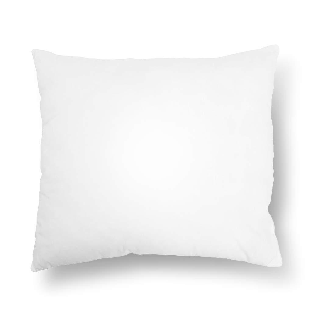 Emolli 18 x 18 Pillow Inserts Set of 1, Throw Pillow Inserts Premium Stuffer Down Alternative,Super Soft Microfiber Filled Decorative Pillow Cushion by Emolli
