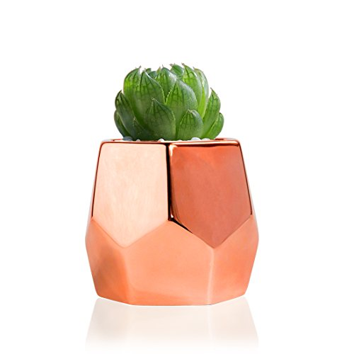Copper Planter Flower Pots Ceramic Sucuulent Pot/Catus Plant Pots Set Of 2(3