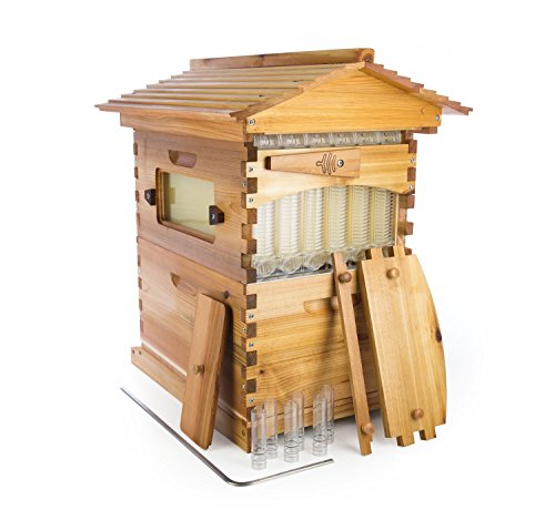Official Flow Hive Classic Cedar 6 Frame - Langstroth style beehive