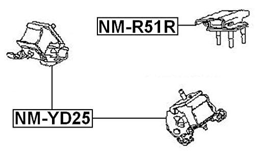 Oem Febest Nissan Front Engine Mount Yd25Ddti 11220-Eb300