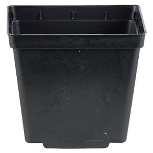 """50nuevo negro 5""""Kord Jumbo ~ cuadrada para macetas macetas son 53/8"""" x 53/8""""x 6"""" H"""