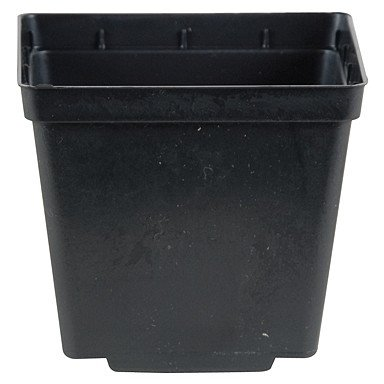 Case of 200 NEW BLACK 5'' Kord Jumbo Square Pot ~ Pots are 5 3/8'' W x 5 3/8'' L x 6'' H by Kord