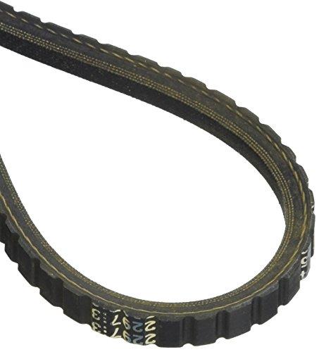 Dayco 15355 Top Cog Fan V Belt