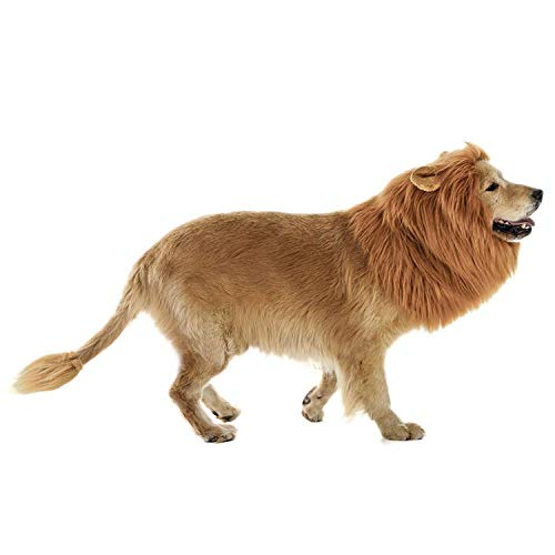 lcfun Lion Mane Costume for Dog - Pet Wig with Ears and Gift [Lion Tail], Dog Clothes for Halloween -